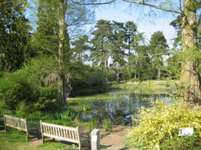 Королевские ботанические сады в Кью, Великобритания