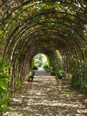 Сады Бумкамп, Нидерланды