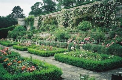 Сады Монтевиот, Шотландия