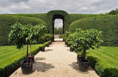Сад замка Хет Лоо, Нидерланды