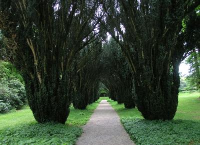Сады и Арборетум Вудсток, Ирландия, графство Килкенни