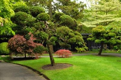 Сад Святого Фиакра, Ирландия