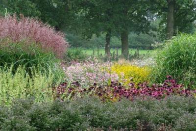 Сад Криса Гиселена, Бельгия