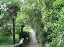 Дендрологический парк Южные культуры, Сочи, Адлер