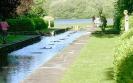 Баскот парк, Англия