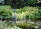 Сады Леди Фарм, Великобритания