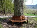 Скамейка вокруг дерева