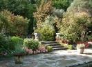 Илнэкаллин (Сады острова Гарниш), Ирландия