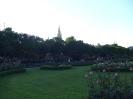 Вена городской парк розарий