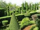 Ботанический сад Мадейры