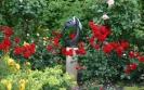 Сады Кийктуйнен, Нидерланды