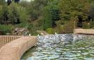 Парк Феникс, Франция