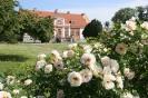Сады поместья Катринторп, Швеция