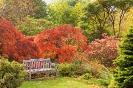 Сад Бранклин, Шотландия