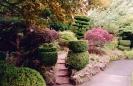 Японский сад Ирландского Национального Конного Завода, Ирландия