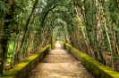 Сады Боболи, Италия