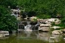 Пекинский ботанический сад, Китай