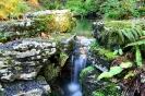 Сады Эксбери, Англия