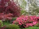 Ботанический сад Гамбурга, Германия