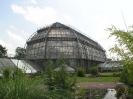 Ботанический сад в Берлине