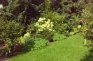 Сады и парки Германии