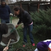 Осенние работы в саду. Практика студентов