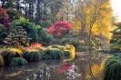 Ботанический парк Верхней Бретани, Франция