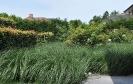 Сад Дирка Девриса, Бельгия