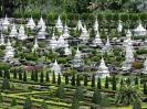 Тропический ботанический сад Нонг Нуч, Тайланд