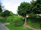 Сад Пьета Бекарта, Бельгия