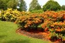 Сады при дворце Скоун, Шотландия